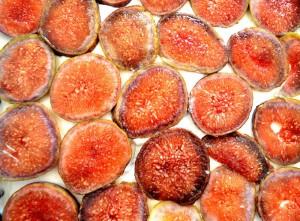 Fresh Fig-No Bake Cheese Cake