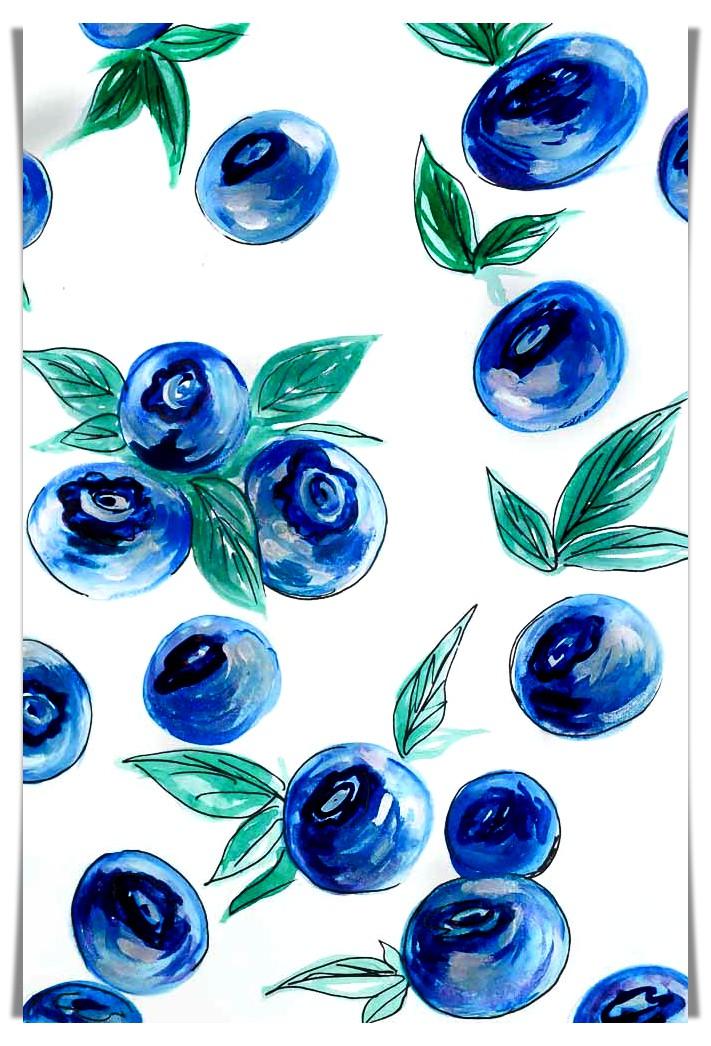 Blue Berries food drawing