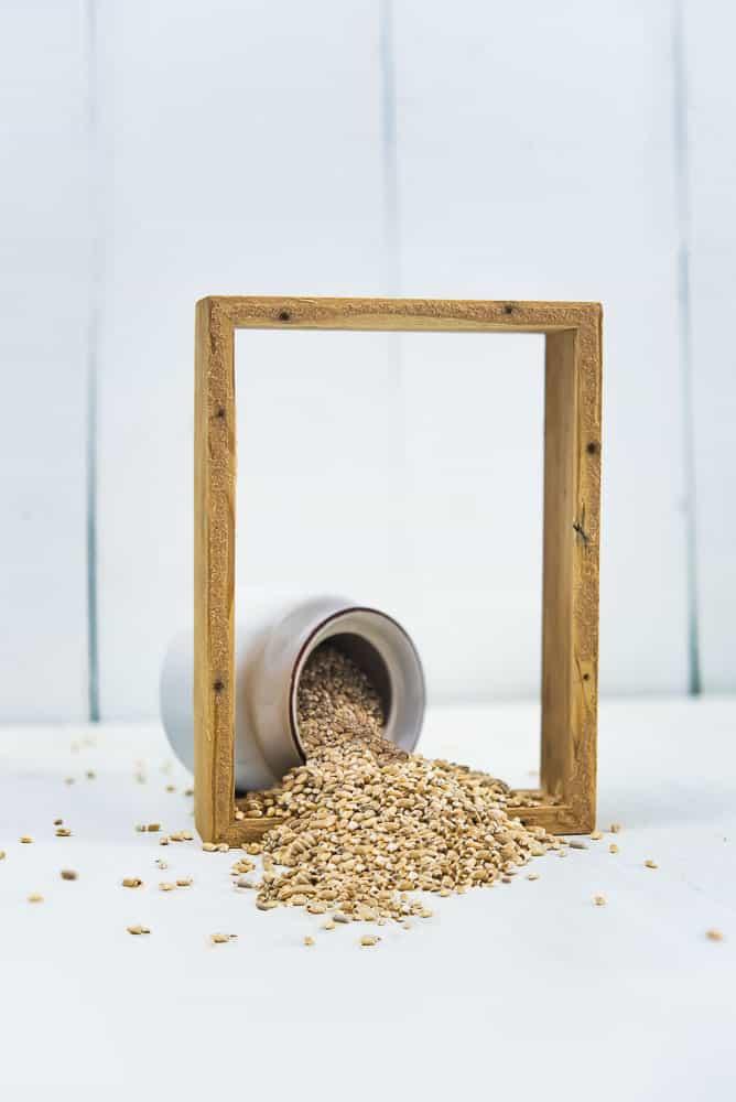 Barley Chickpea Pulao